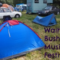 Waihi Bush Music Festival – My First Music Festival